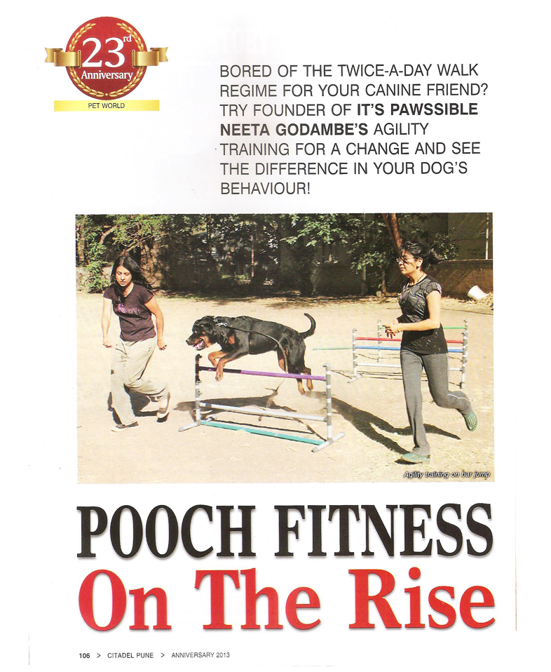 Pooch Fitness On The Rise